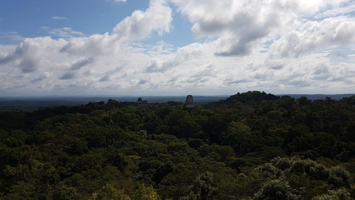 At the top of Temple IV at Tikal, which was used in seven seconds of footage in the original Star Wars film. From the top of the temple can be seen Temple III poking up out of the jungle canopy
