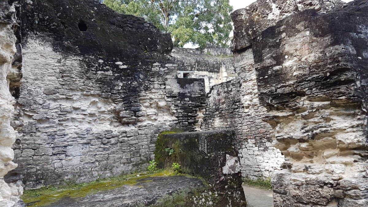 Potentially a bed chamber in the Central Acropolis of Tikal, the stone structure contains an inbuilt stone platform