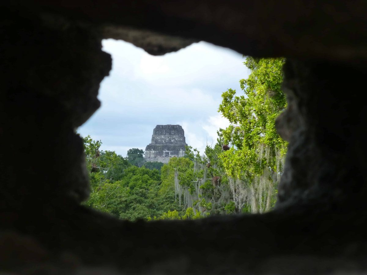 A window at the top of the North Acropolis offers a view across the jungle to Temple IV