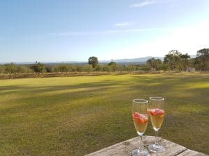 Glasses of wine with backdrop looking out over Hunter Valley at Wilderness Cottage Lovedale