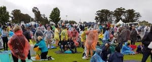 a sea of ponchos on a wet Hunter Valley concert weekend