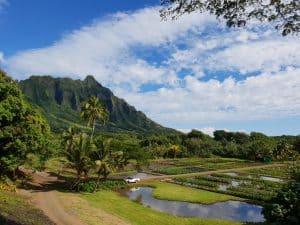 Aquaculture sites at Kualoa Ranch, Oahu