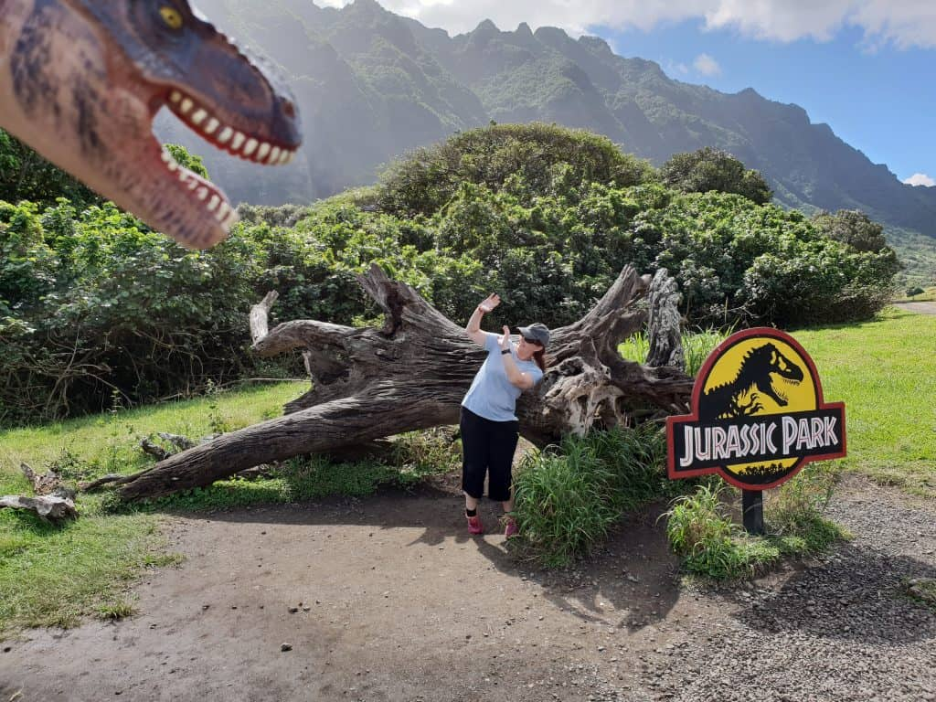 Cowering from a dinosaur behind the stump famously featured in Jurassic Park, Kualoa Ranch Oahu