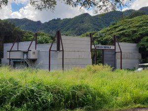 Jurassic World set on Jungle Jeep Expedition, Kualoa Ranch Oahu