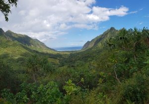 Spectacular views on the Jungle Jeep Expedition, Kualoa Ranch Oahu
