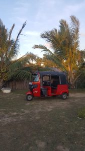 Tuk Tuk in Sri Lanka by Nuria from Sube a la Nabe