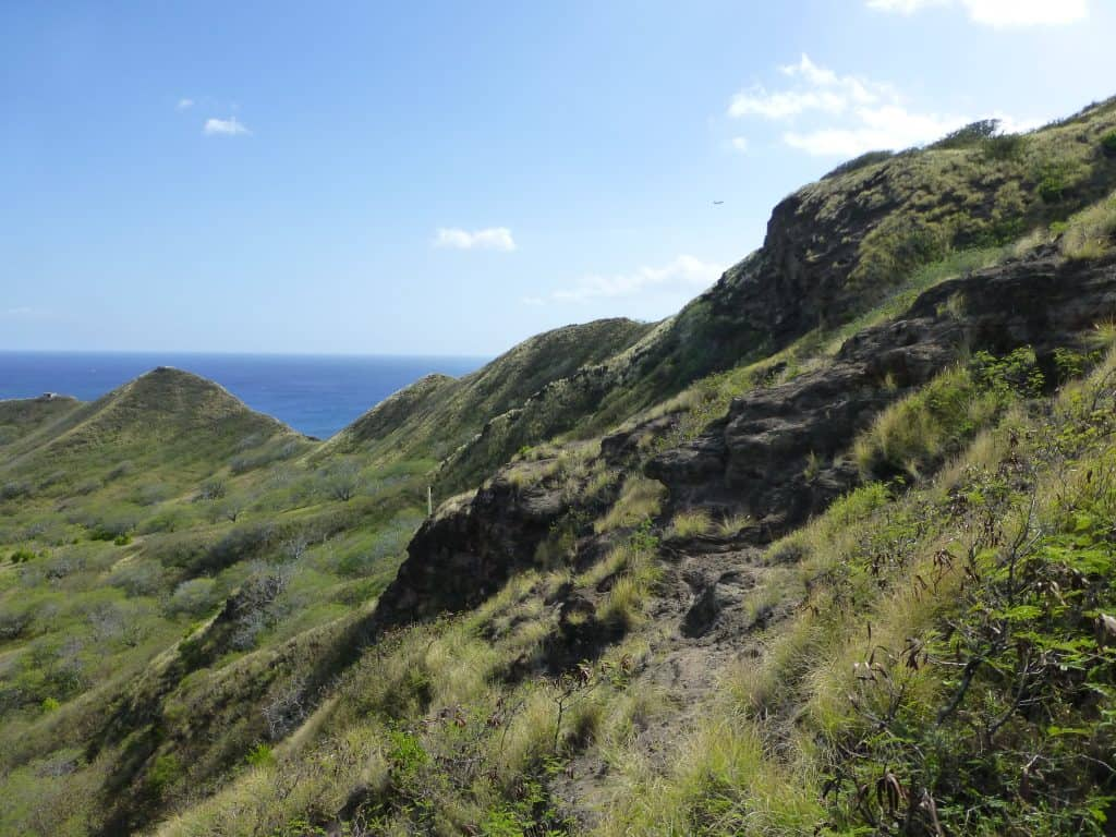 Landscape on Diamond Head, Waikiki