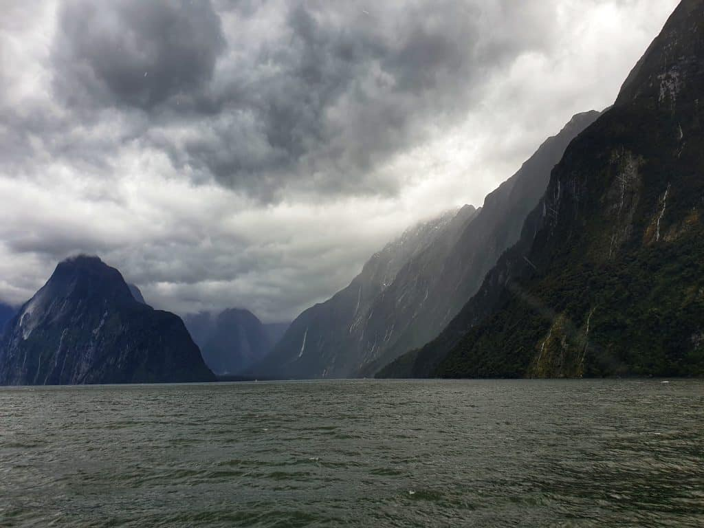 Cruising on Milford Sound
