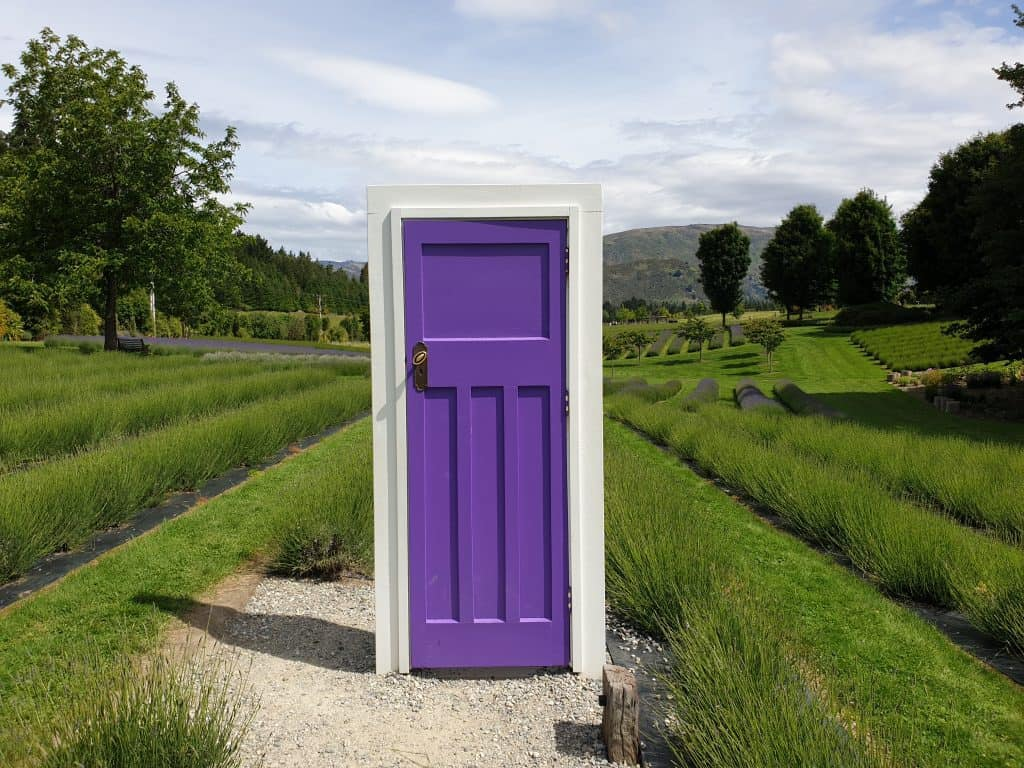 Lavender coloured door in the lavender fields
