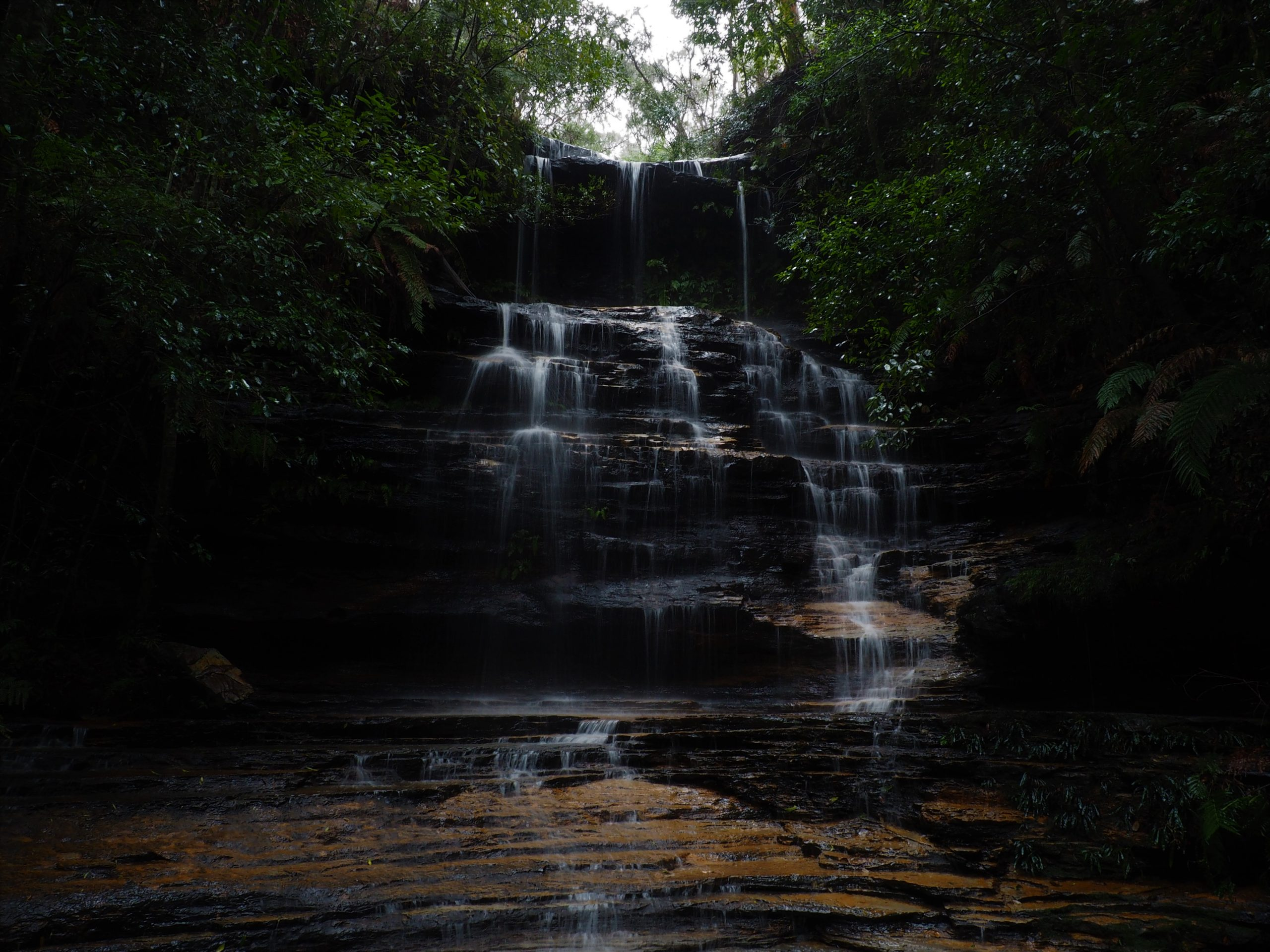 Junction Falls on Lawson Waterfall Circuit