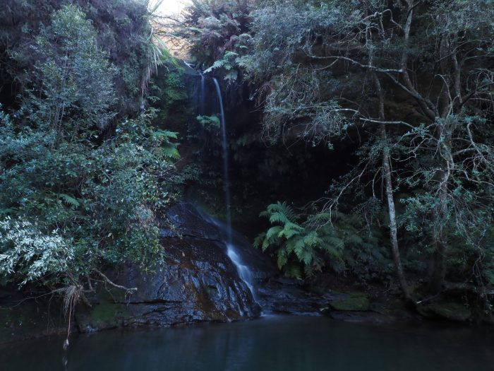 Waterfall in Lyrebird Dell, Leura