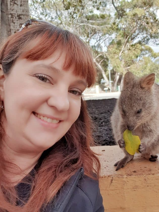 Selfie with a Quokka on Rottnest Island. Quokka sitting on wall eating leaf