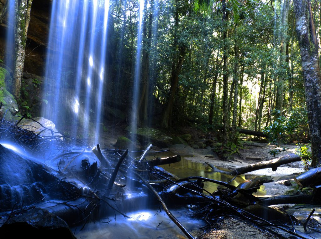 Image taken behind Oakland Falls in Hazelbrook, looking down into gully from behind the waterflow