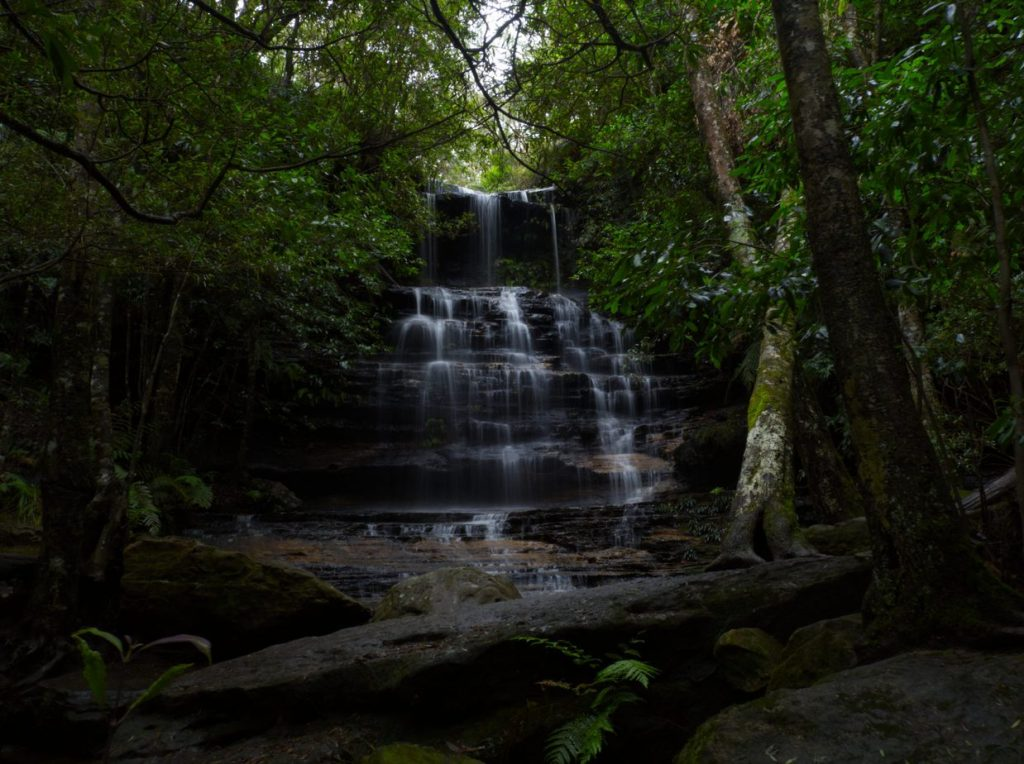Image of Junction Falls on the Lawson Waterfall circuit taken front on from a short distance away so rocks and trees frame image