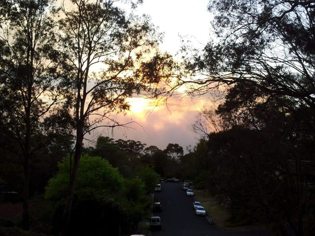 Sun rising through the smoke of the fire at the end of my street in the Blue Mountains October 2013 fires