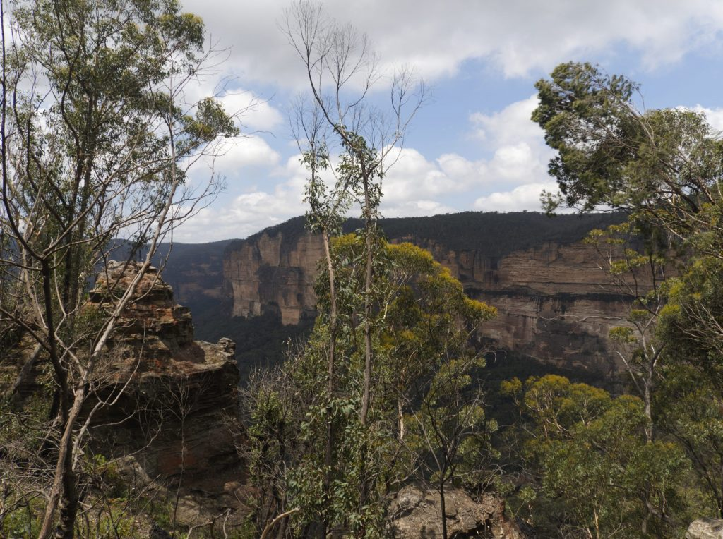 Image of cliffs and bushland on the descent into the Grand Canyon Blue Mountains