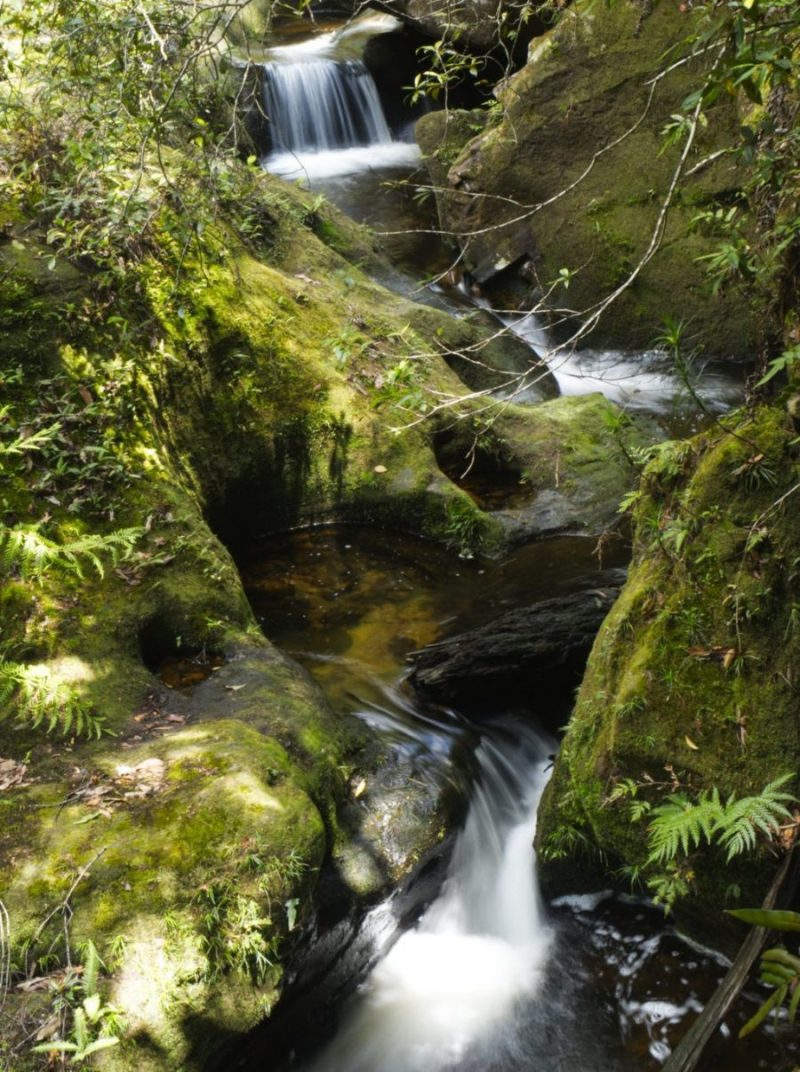 several small falls on Greaves Creek in the Grand Canyon Blue Mountains