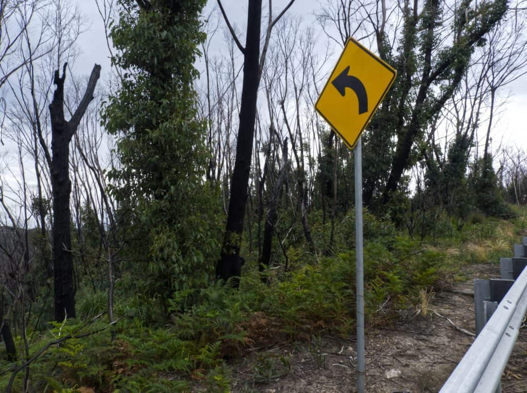 Colour image on Bells Line of Road near Mount Wilson showing replaced left bend sign and regrowth in the trees