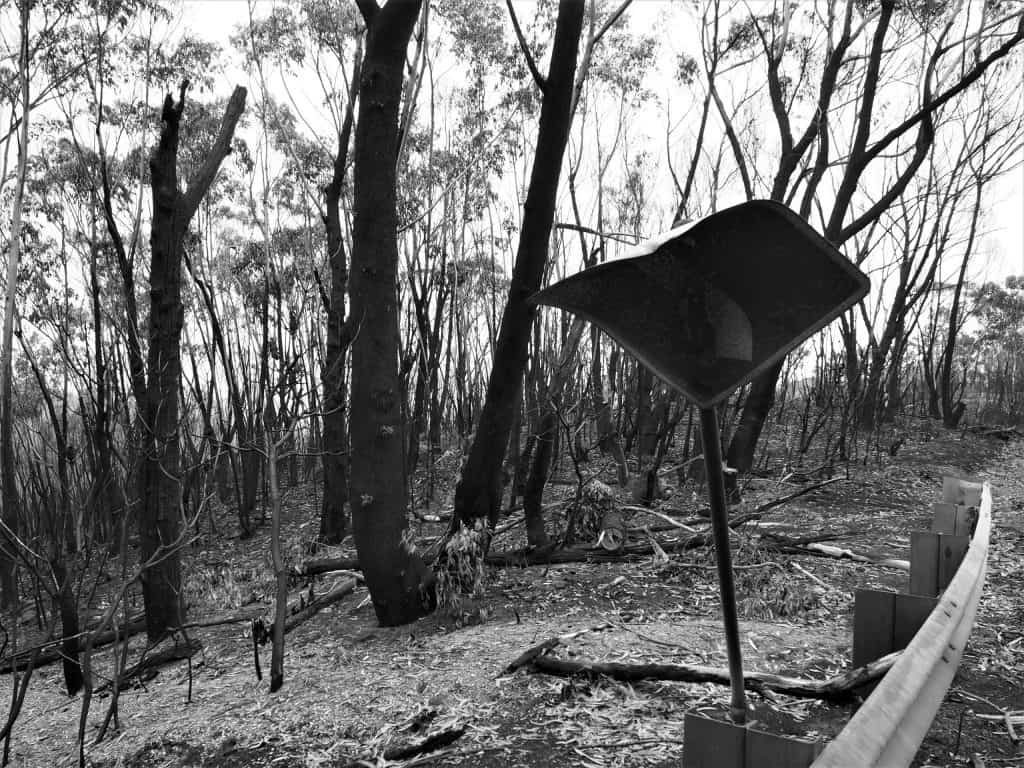 Black and White image of a burnt street sign indicating an upcoming left turn, charred trees behind it