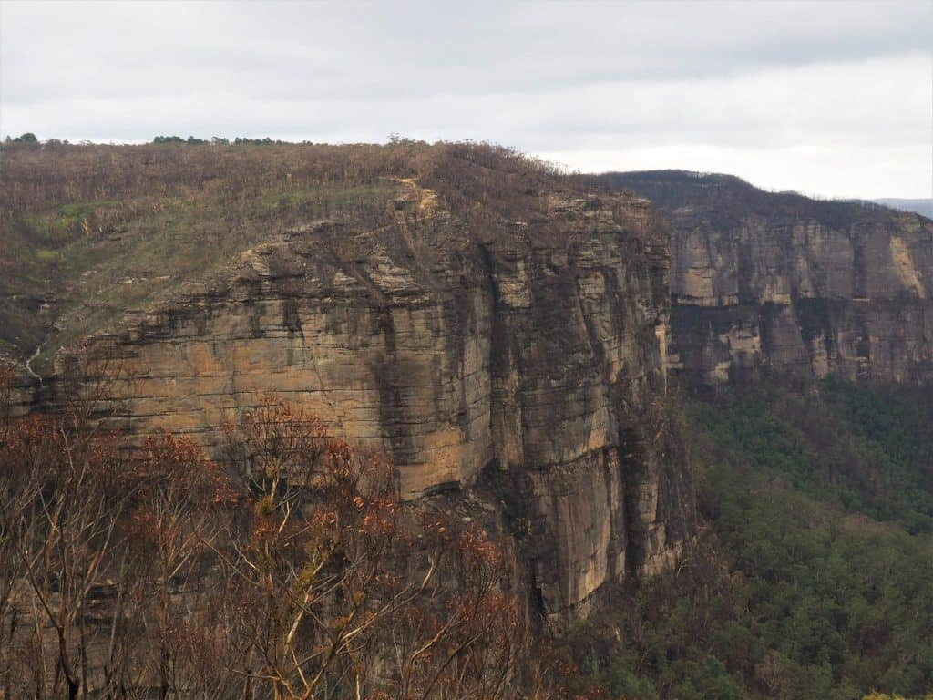 Cliff face at Govetts Leap in Blackheath where the Grose Valley fire roared up the cliff